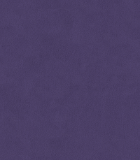 Mulberry (Anyzo-87)