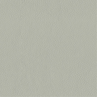 Stone Grey Thick Italian Leather (BT-32)