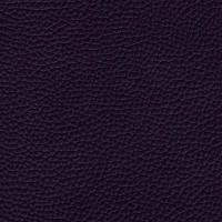 Plum Italian Leather (BT-50)