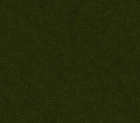 Forest Green (Enjo-59)