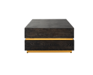 Venus Coffee Table - Gold Profile