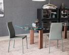 Maya Flex Dining Chairs