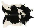 Rodeo Cowhide Black / White Rug - Asiatic