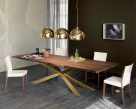Spyder Wood Dining Table - Brass Base
