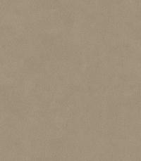 Pale Brown (Anyzo-44)
