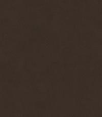 Dark Cocoa (Anyzo-55)