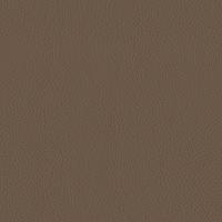 Mushroom Italian Leather (BT-07)