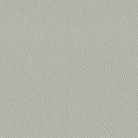 Dove Grey Italian Leather (BT-10)