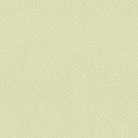 Avorio Semi Aniline Leather (BT-11)