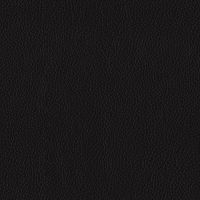 Black Semi Aniline Leather (BT-12)