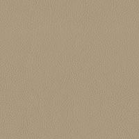 Latte Italian Leather (BT-20)