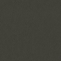 Dark Grey Italian Leather (BT-21)