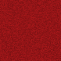 Red Thick Italian Leather (BT-28)