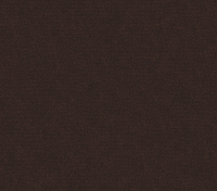 Shiny Chocolate (Enjo-55)