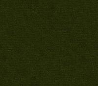 Forest Green (Enjo-59)