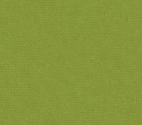 Olive Green (Enjo-65)