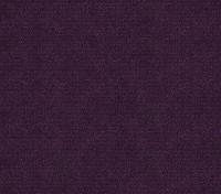 Purple Shine (Enjo-88)