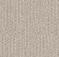 Warm Birch (Misha-42)