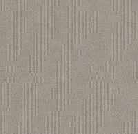 Cement (Misha-94)