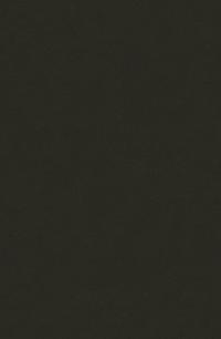 Dark Grey (Nola-78A)