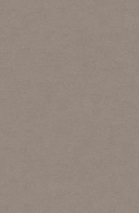 Dove Grey (Nola-93A)