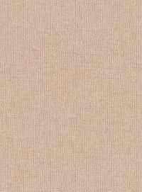 Birch (Zollan-42)