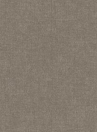Dusty Stone (Zollan-96)